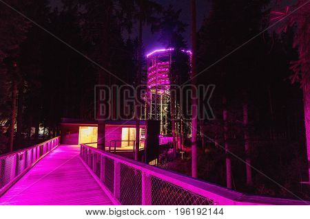 Color-lit Treetop Walkway in night Sightseeing trail in tree crowns. Wooden construction with a slide in the middle. Touristic place and unique constructionc. Treetop Walkway in Lipno Czech Republic