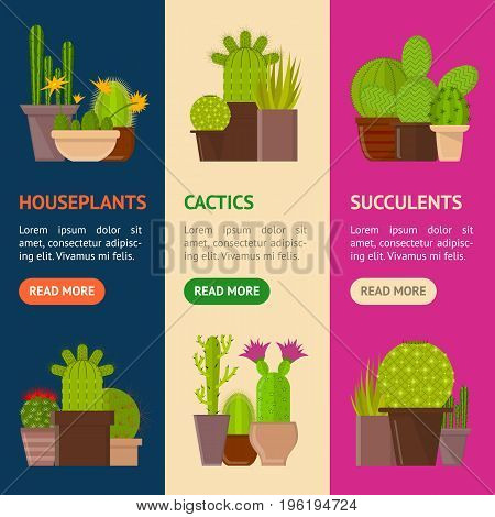 Cartoon Cactus Plant in Pots Banner Vecrtical Set for Home or Office. Vector illustration