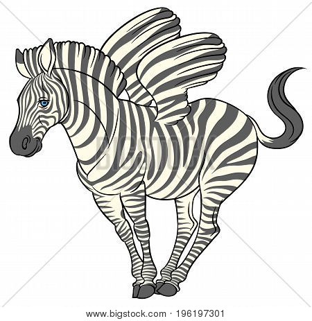fun cute cartoon zebra with striped wings - vector illustration zebra pegasus