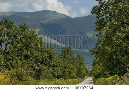 Majestic mountain top overgrown with  forest, valley and grass glade, Central Balkan mountain, Stara Planina, Bulgaria