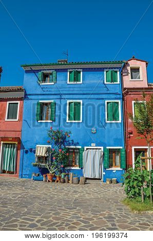 Burano, Italy - May 08, 2013. View of colorful house facade with bush flowers beside door on sunny day in Burano, a gracious little town full of canals, near Venice. In Veneto region, northern Italy