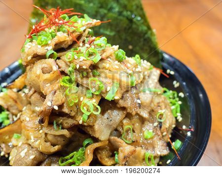 Close up image.Japanese traditional dish Gyudon (or Butadon) made from thinly sliced beef (or pork), onion, soy sauce and rice.
