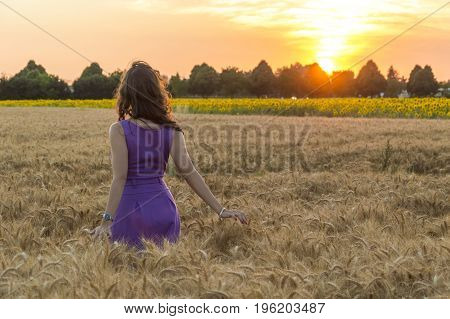 Young caucasian woman with long hairs at grain field at sunset