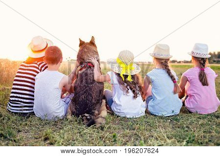 Four young caucasian kids one adult female and a dog sitting on the grass in the summer sunny field watching sunset. Their backs are turned towards camera.