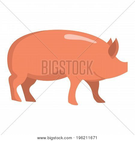 Pink pig flat cartoon icon. Pig vector illustration for design and web isolated on white background. Pig vector object for labels, logos and advertising