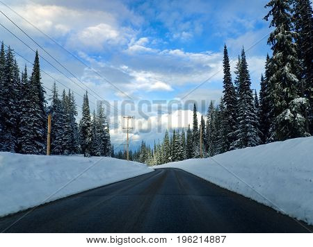 Driving Along a Winding Road, Through a Snow Covered Forest, in the Afternoon