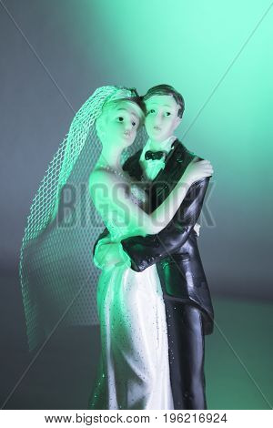 Newlyweds embraced bride and groom. Wedding day