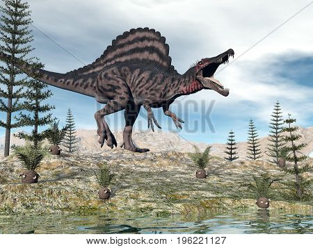 One spinosaurus dinosaur walking in the desert among cycaeodia and calamite plants - 3D render