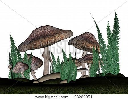 Brown mushrooms and vegetation isolated in white background - 3D render