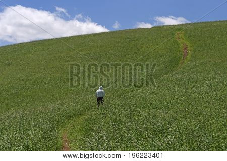 Hiker Heading up the hill along the Blue Ridge Parkway in North Carolina