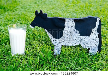 Glass of Milk with dairy cow wooden blackboard on green grass