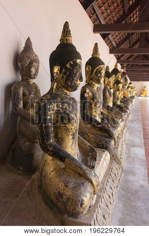 A row of seated Buddhas at a temple ;South of Thailand