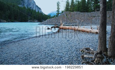 A log sits washed up on the rocky shore of the Bow River at Bow Falls in Banff, Alberta, Canada.