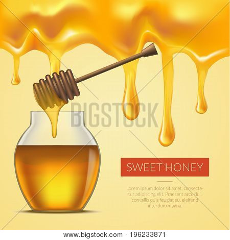 Honey Melted Background Dipper and Glass Jar Honey, Card or Poster. Place for Your Text. Vector illustration