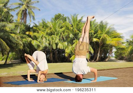 fitness, sport, yoga, people and healthy lifestyle concept - couple making headstand outdoors over natural exotic background with palm trees