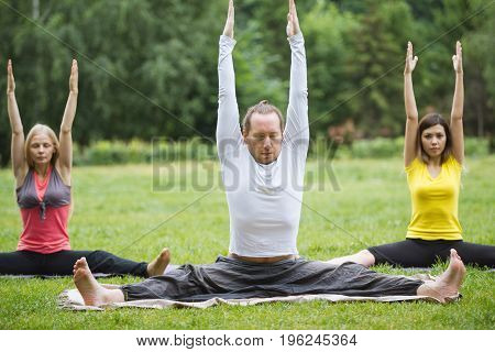 Group yoga practice with an instructor on green grass in the park, summer