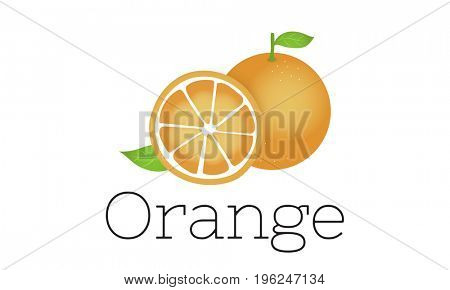 Illustration of vitamin nutritious orange healthy food