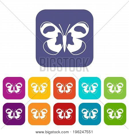 Spotted butterfly icons set vector illustration in flat style in colors red, blue, green, and other