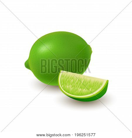 Isolated colored group of lime slice and whole juicy fruit with shadow on white background. Realistic citrus