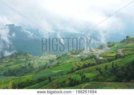 Morning mountain landscape with waves of fog and cloudy sky. Waves of clouds in the mountain peaks covered with cabbage fields Cultivated land at Phu Tub Berg Phetchabun province Thailand