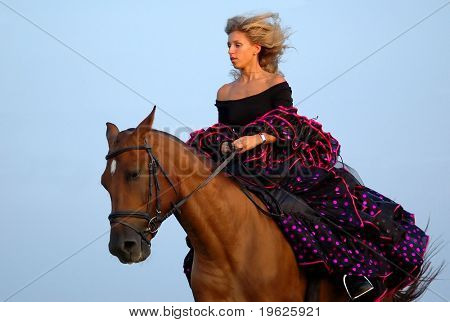 horse show in fancy-dress - Spaniard poster