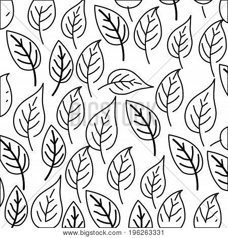 white background with monochrome pattern of ovoid leaves vector illustration