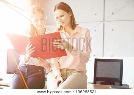 Young businesswomen reading file while sitting on desk in office