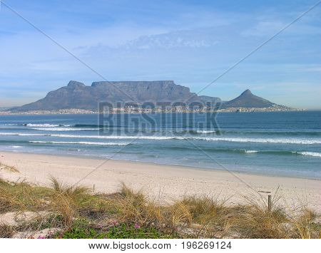 FROM CAPE TOWN, SOUTH AFRICA, WITH INDIGENOUS GRASS AND THE BEACH IN THE FORE GROUND AND A CLEAR TABLE MOUNTAIN IN THE BACK GROUND