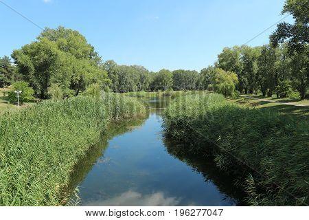 Park lake blue sky green lakeside calm.