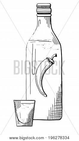Sketch bottle of vodka. Sketch of glass with vodka. Vector illustration.