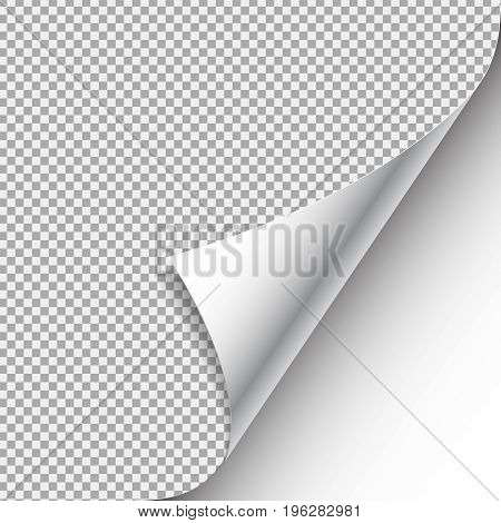 Curled corner with shadow on transparent background realistic vector illustration