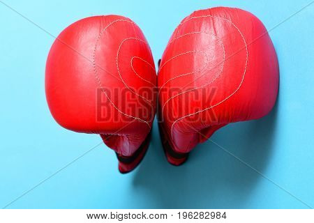 Sport Equipment Isolated On Bright Blue Background. Professional Box