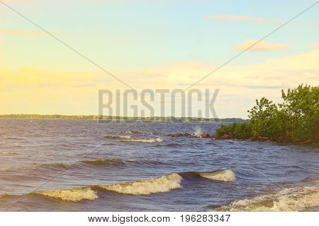 The coast of the river in windy weather on a sunny day