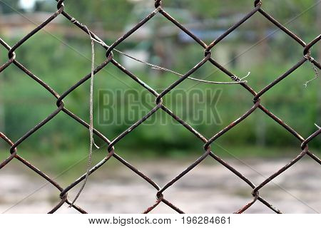 Protection tool / Old rusty wire net cage for protecting