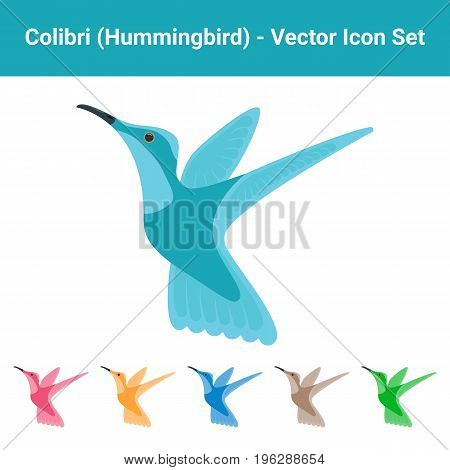 Colibri Hummingbird - Set Of Different Colored Birds Isolated On A White Background. Vector.