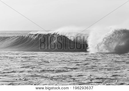 Wave Ocean Power Black White