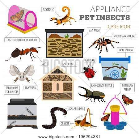 Pets_appliance_rodents_4