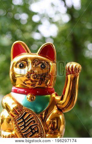 Japanese lucky cat (Maneki Neko) in closeup