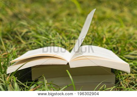 Books Stack In The Grass