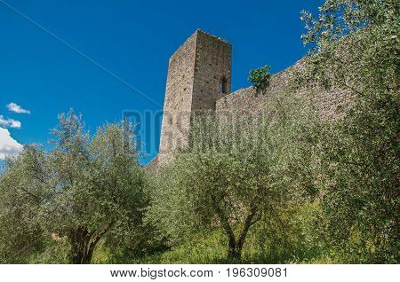 Close-up of the stone walls of the Monteriggioni hamlet, surrounded by greenery. A medieval fortress town, surrounded by walls at the top of a hill near Siena. Located in the Tuscany region