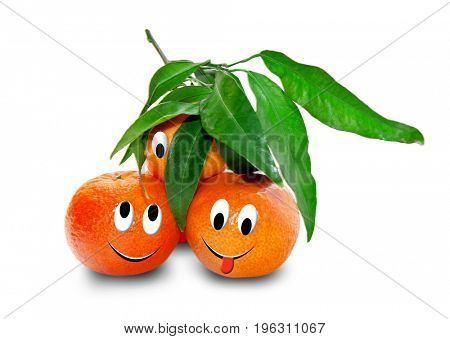 Ripe tangerines isolated on white. Funny characters from the original idea of the concept.