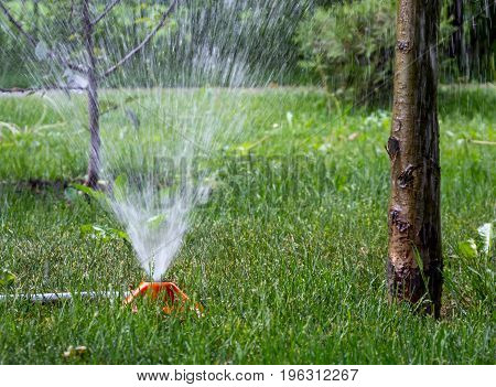 Operation of the irrigation system in the park