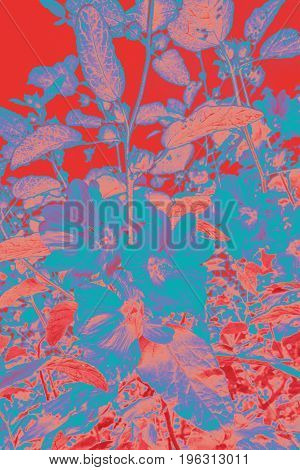 Artistic floral background in red pink and blue