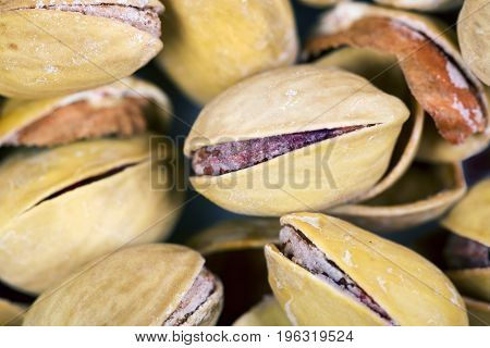 Dried pistachio nuts with and without shell macro close up
