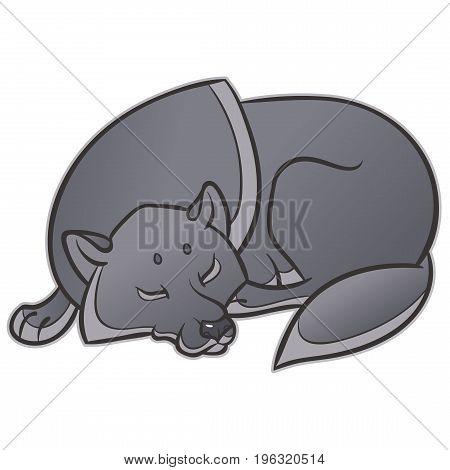 wild wolf sleep peacefully - vector graphics illustration