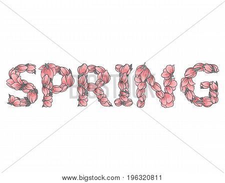 SPRING sign or lettering made with sakura flowers and leaves - floral alphabet letters set, vector design