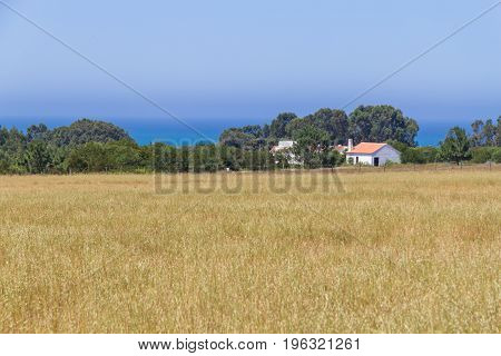 Farm house plantation and ocean in Porto Covo Alentejo Portugal