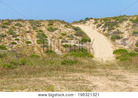 Dunes And Sand Road In Porto Covo