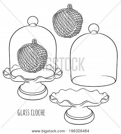 France Glass Cloche for food, flower or home decor with decorative rope knot and stand