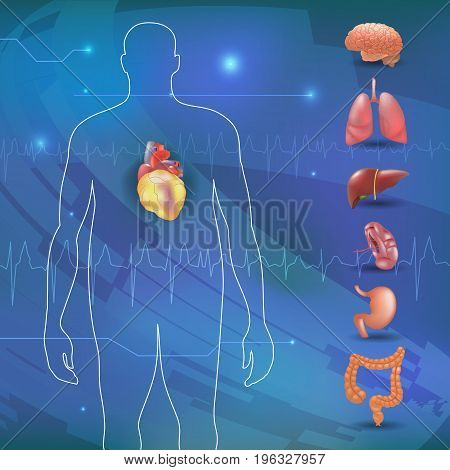 obesity-related diseases info graphics with human organs. Vector illustration.